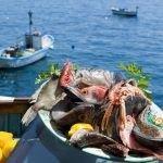 Distracţie la pescuit şi gătit