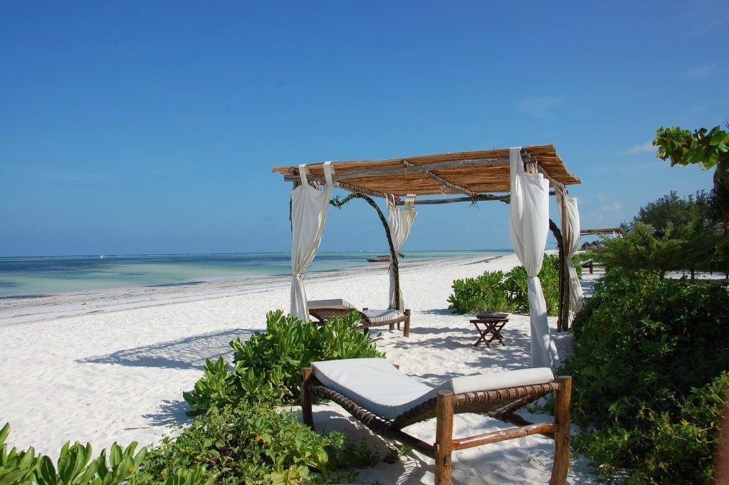 next-paradise