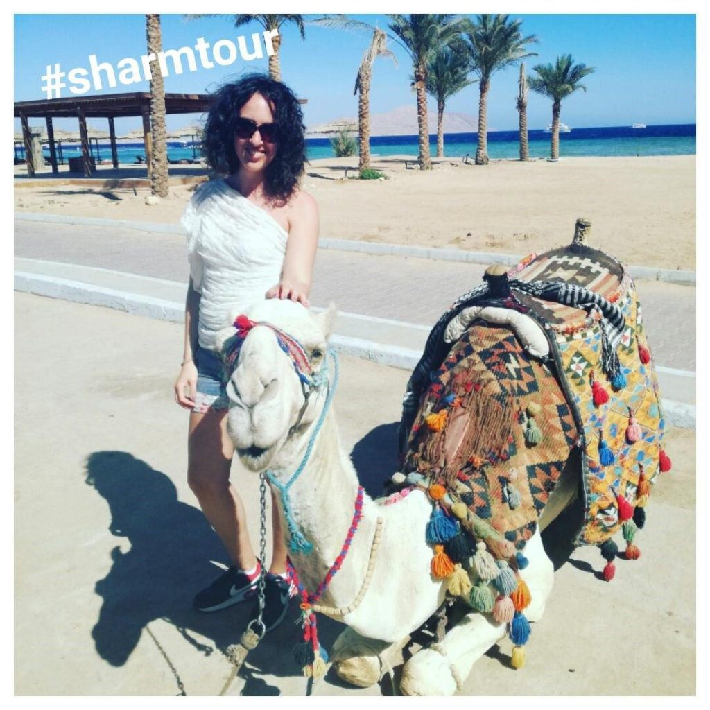 Vacanța mea în Egipt
