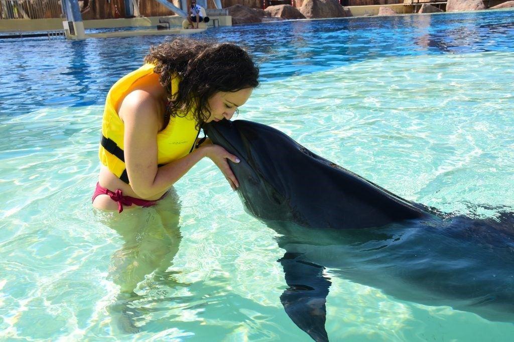 înotul cu delfinii în Aquapark-ul Land of Legends din Antalya