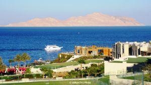 Insula Tiran văzută de la hotelul Sunrise Arabian