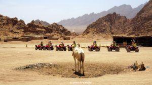 vacanță all inclusive în Sharm El Sheikh, Egipt