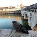 Podul Tiberius