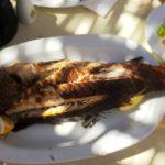 Akdeniz Caretta Restaurant