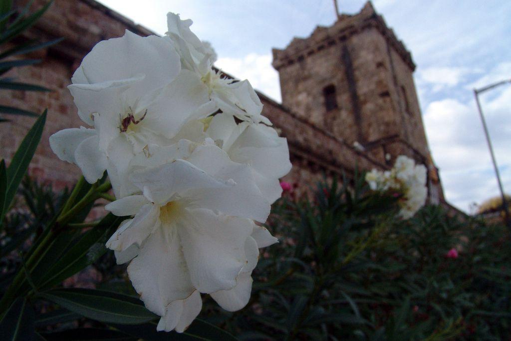 Montjuic, Barcelona - obiective turistice