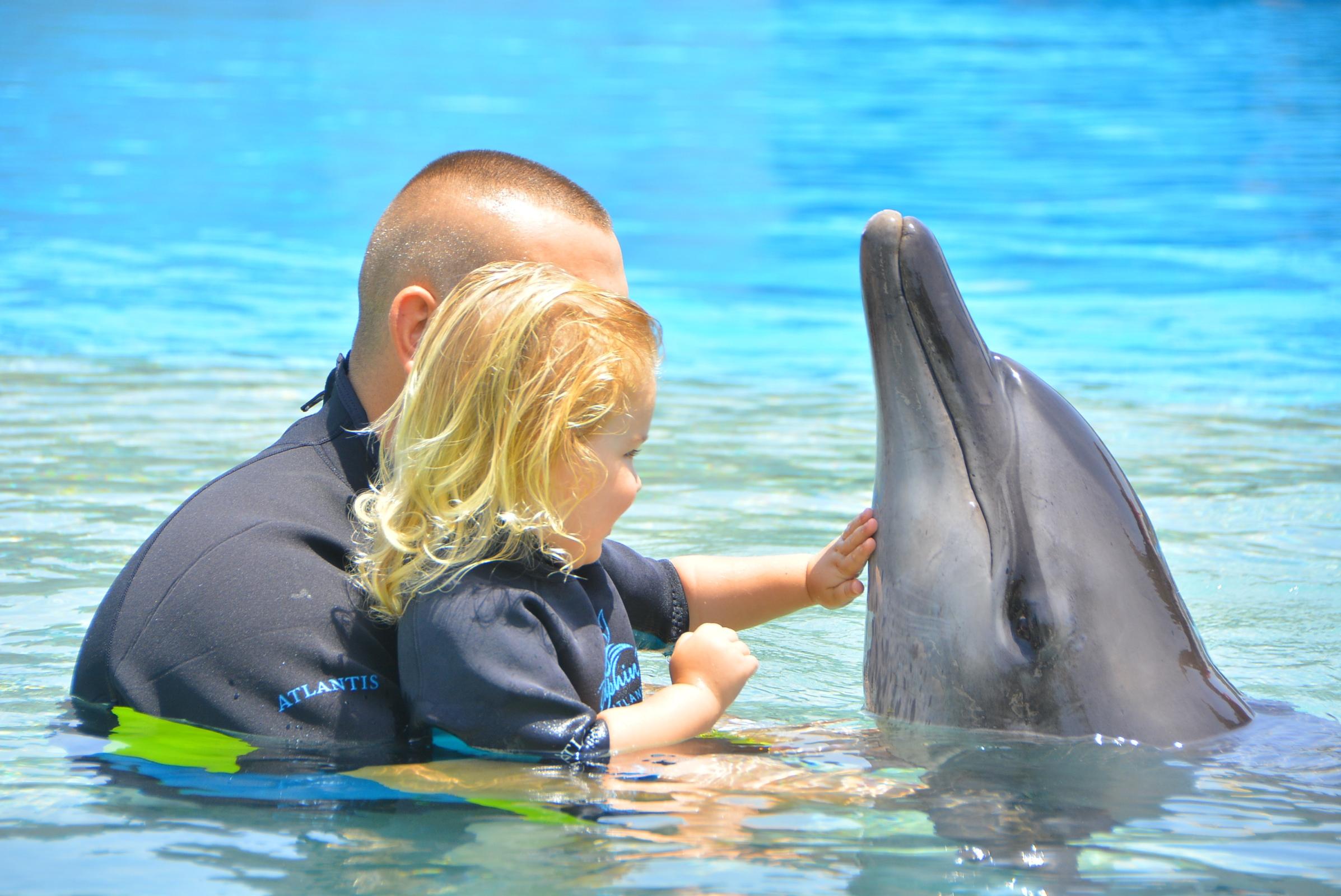 Vacanţele turiştilor mei - înot cu delfinii la Atlantis The Palm, Dubai