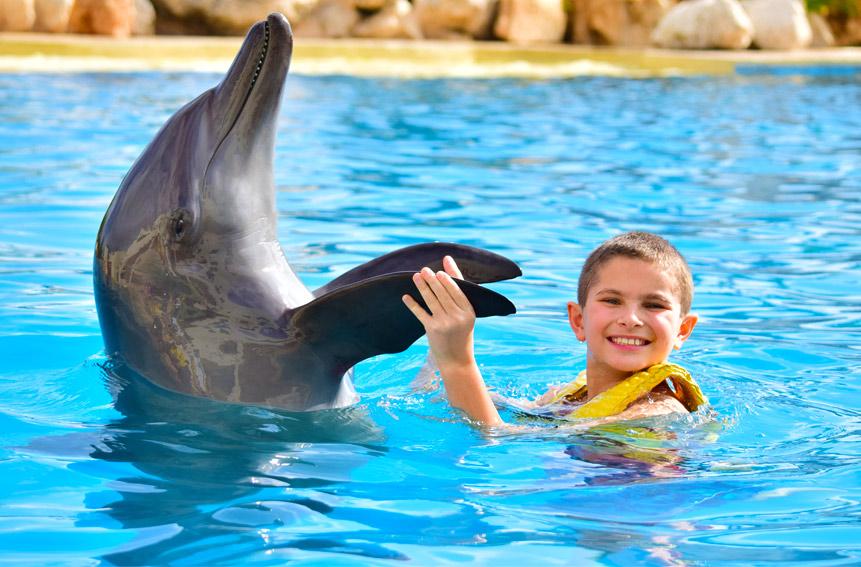 înot cu delfinii la Dolphinaris Cancun, Cozumel & Riviera Maya, Mexic