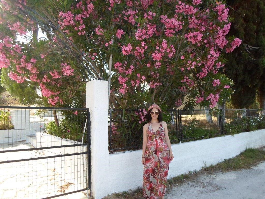 sejur în Skiathos, Grecia