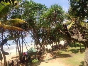circuit Sri Lanka