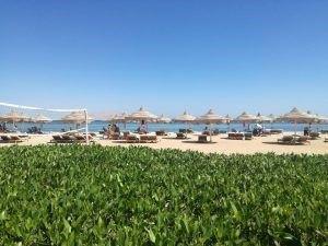 vacanță all inclusive în Egipt ANCAPAVEL.RO