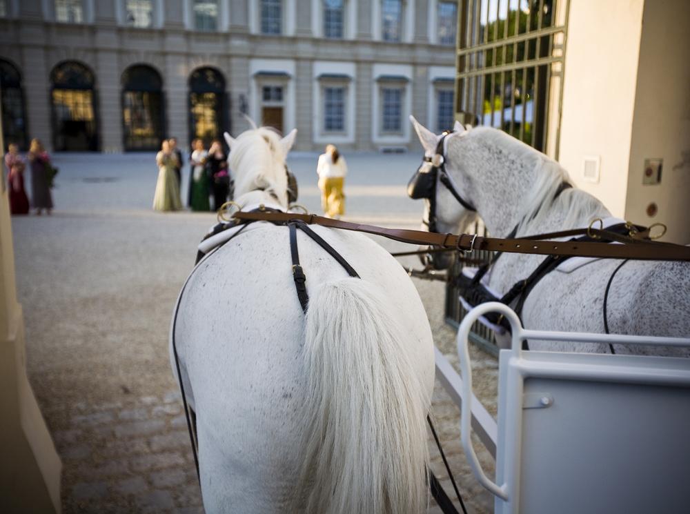 Garden Palace - Palatul Liechtenstein