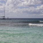 Snorkeling pe insula Catalina