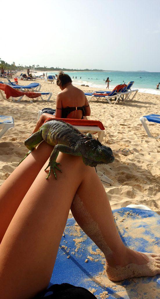 Atracţii din Punta Cana, Republica Dominicană, ANCAPAVEL.RO
