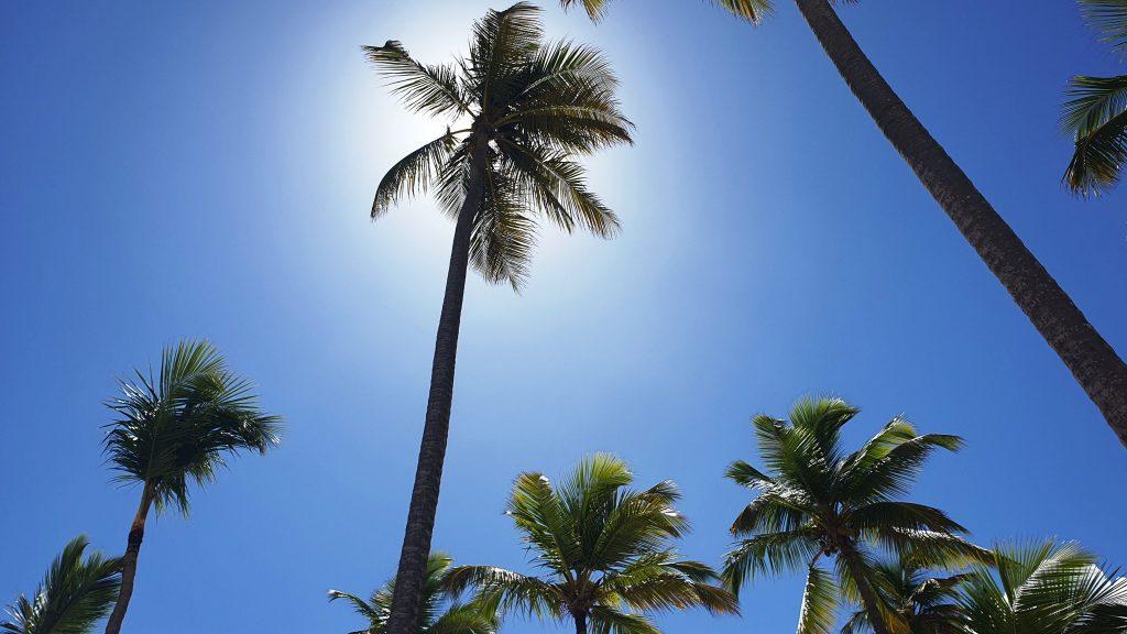 plajă din Punta Cana, Republica Dominicană