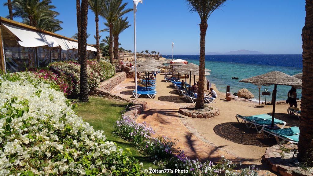 oferte de vacanta în Sharm El Sheikh