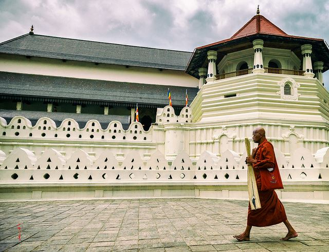 Imagini pentru sri lanka templul dintelui