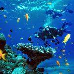 Scufundări în Marea Mediterană