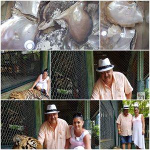 vacanta exoticia in Phuket, Thailanda