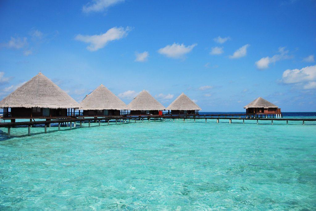 circuit Maldive