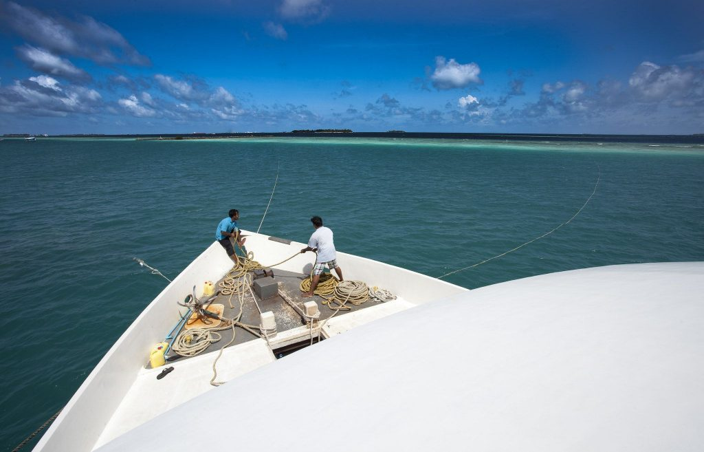 scuba diving în Maldive
