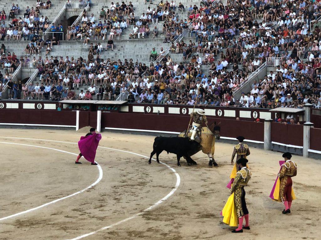 Vacanţele turiştilor mei: Corida din Madrid, ANCAPAVEL.RO
