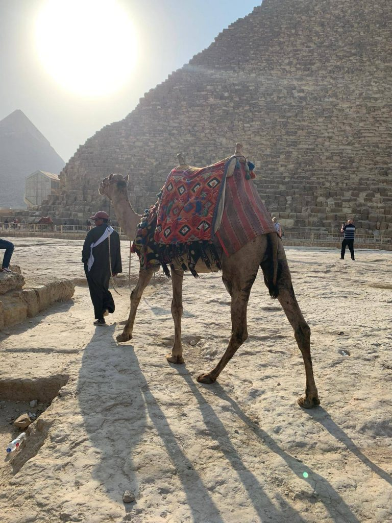 Circuit în Egipt, foto @ANCAPAVEL.RO