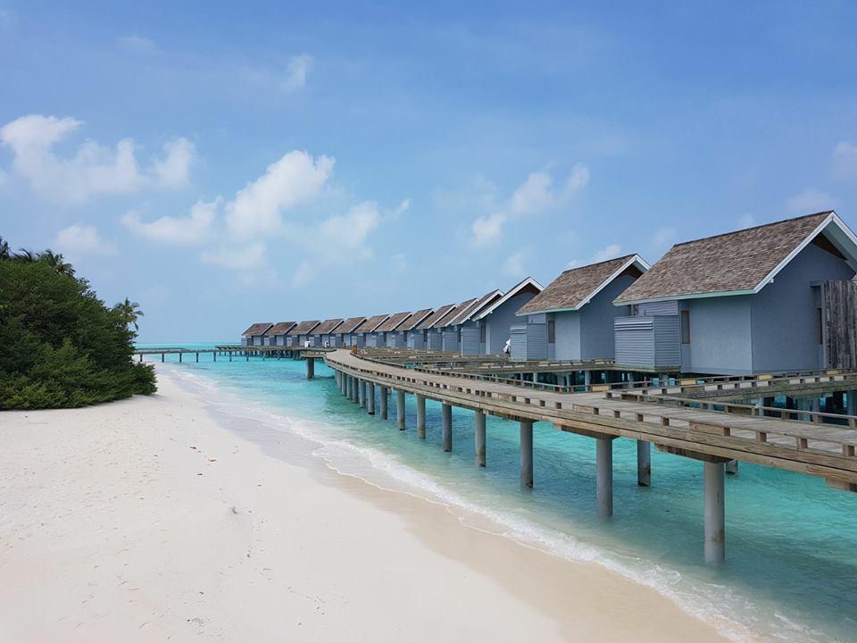 Fotografii de la turişti: Kuramathi Resort Maldive, foto @ANCAPAVEL.RO