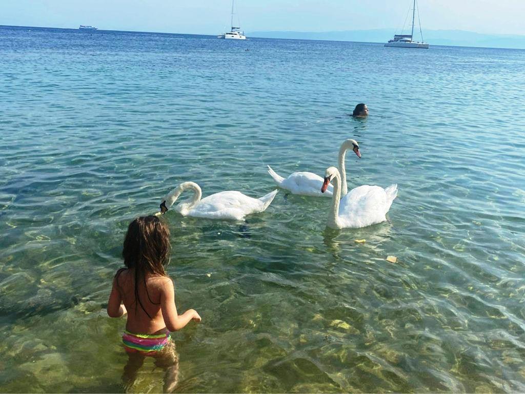 #VacanteleTuristilorMei: Skiathos Princess Hotel